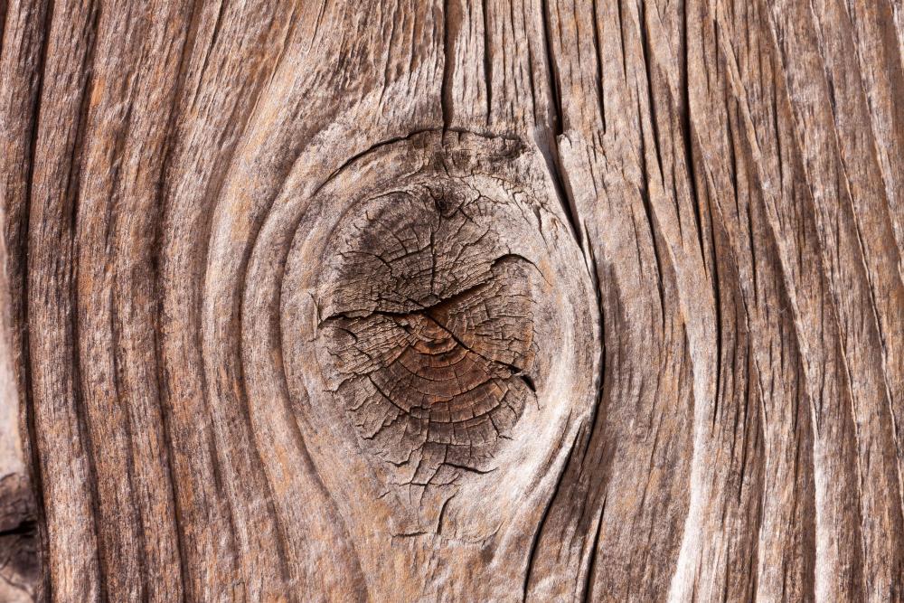 Holz in Wuchsrichtung